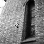<!--:en-->Olympus XA Kodak 160 NC Caffenol-C http://www.caffenol.org<!--:-->